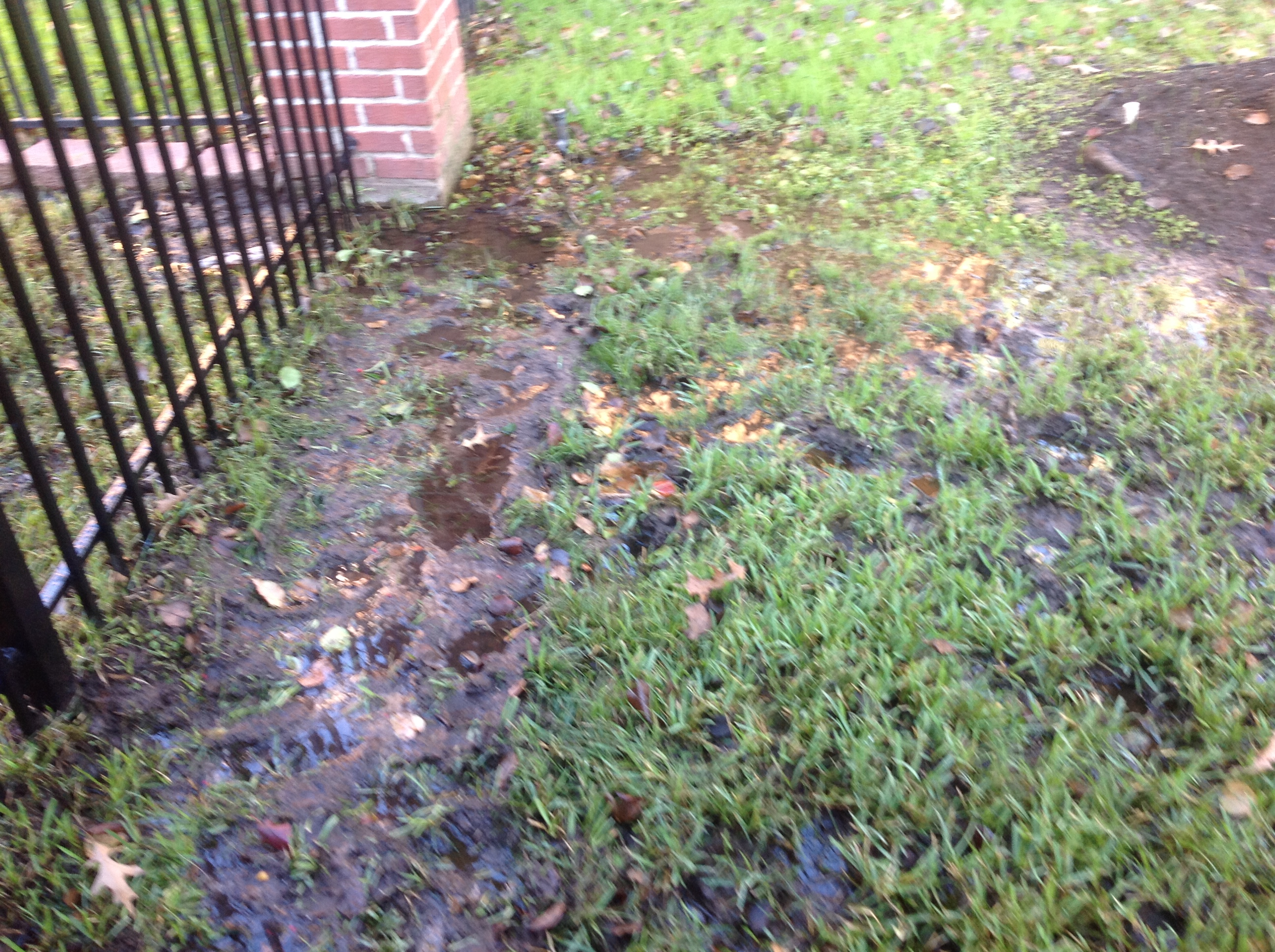 Landscaping Muddy Yard : Drainage dallas area lawn solutions